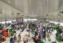 """Mercavalència garanteix el subministrament de productes frescos en els mercats municipals de """"tota la ciutat"""""""