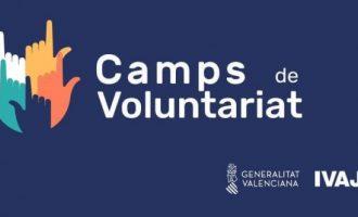 L'IVAJ suspén els camps de voluntariat juvenil en les convocatòries de primavera i estiu