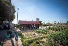 L'Ajuntament de València reobri entre este dissabte i dilluns els horts urbans amb condicions d'entrada i ús durant l'estat d'alarma per la Covid-19