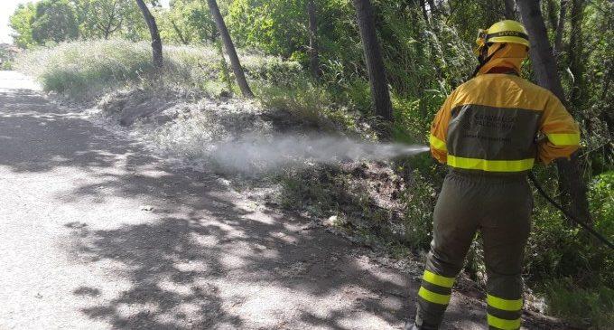 La Conselleria d'Emergència Climàtica reforça els treballs de prevenció d'incendis forestals davant l'inici de l'estiu