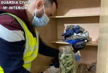 Detingut un home implicat en la venda de marihuana en 'pipicans' de Benifaió i Almussafes