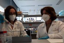 Personal investigador del CIPF proven amb èxit una nova teràpia per al càncer de mama triple negatiu