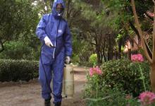 Torrent se protege del mosquito tigre