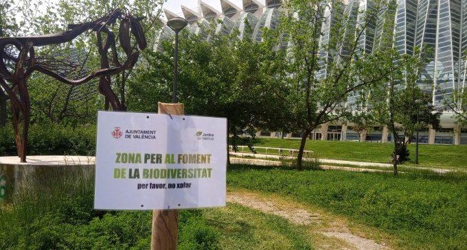 València delimita zones per al foment de la biodiversitat als jardins