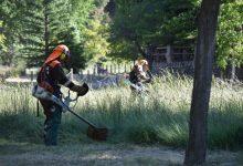 Les brigades forestals de la Diputació condicionen les àrees recreatives