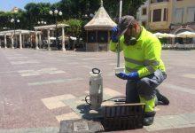 Continúan los tratamientos para el mosquito tigre en Alzira