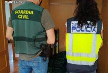 Detenido un joven por montar una plantación de marihuana en un chalé alquilado en Chiva