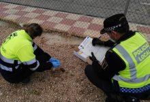Deixar excrements de cans en la via publica comporta sanció a Almussafes