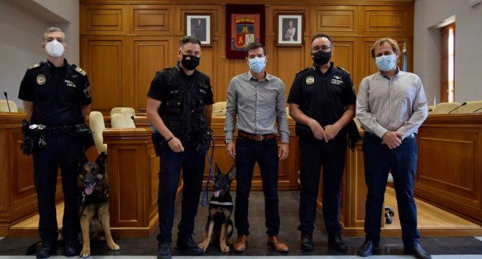 La Policia Local de Burjassot presenta a Boss i Ares, els dos nous gossos policia de la plantilla
