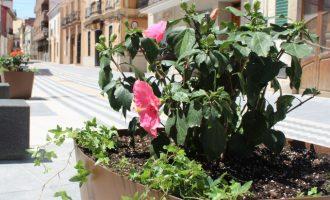 Almàssera destinará 500.000 euros en mejoras para el municipio