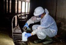 """Puig adverteix que les anàlisis d'aigua residuals apunten a """"un cert repunt"""" de contagis"""
