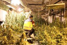 """Desmantellen un """"sofisticat"""" laboratori de marihuana a un xalet i detenen a cinc persones"""