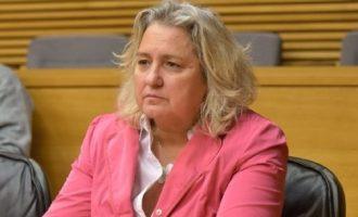 PP demana que el pressupost dels consells de districte suspés per la Covid vaja a reactivar l'economia
