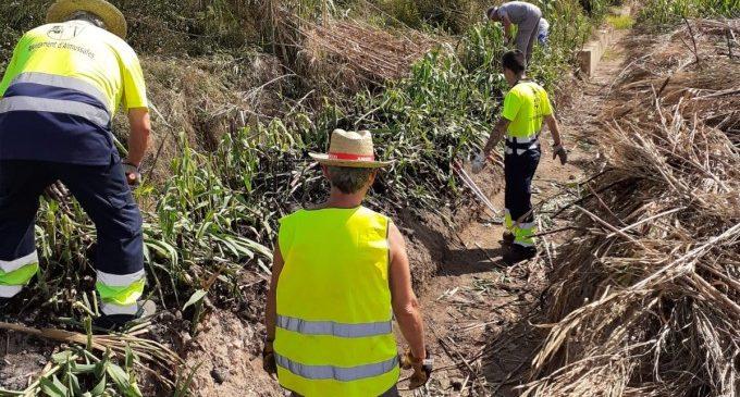 El pla d'ocupació del SEPE, un complement salarial per als treballadors almussafenys del sector agrari
