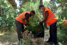 24 persones treballaran durant aquest estiu en tasques de prevenció d'incendis en el Vedat i barrancs del municipi