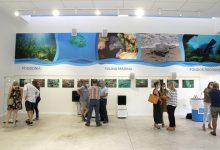 Una exposició fotogràfica et porta als espais naturals de Puçol des de la Sala Blava