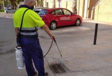 Sanitat destina 350.000 euros en ajudes a municipis per al tractament de lluita contra el mosquit tigre en la Comunitat Valenciana