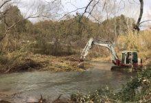 S'invertiran 376.000 euros més per a netejar de canyes la conca del riu Túria