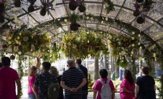 Cullera converteix el Parc de l'Oasi en un racó floral