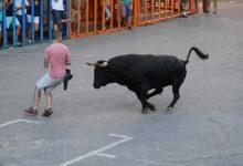 Ganaderos de 'bous al carrer' protestan este martes en València para