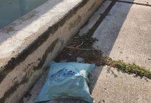 """El PP denuncia l'""""abandó"""" del Monument a les Víctimes de la Riuada i planteja una bateria de mesures"""