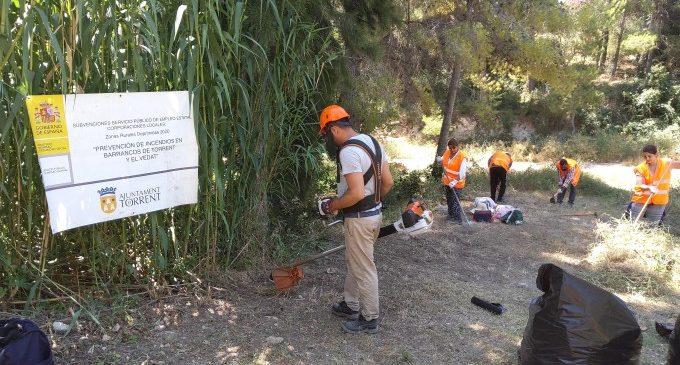 Les 24 persones contractades per a labors de prevenció i neteja contra incendis a Torrent avancen a bon ritme als barrancs i El Vedat
