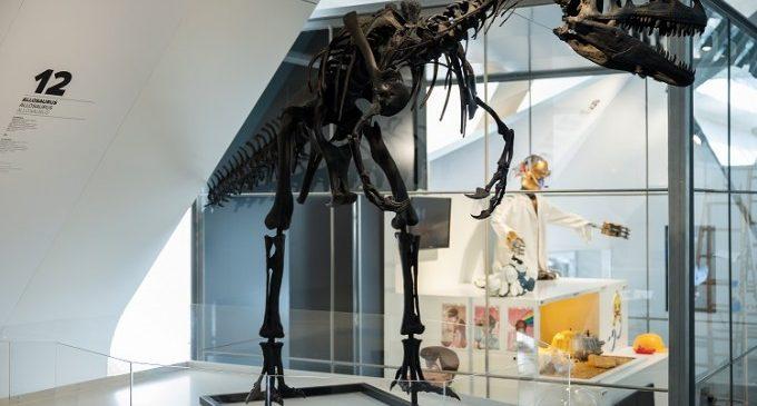 El Museu de les Ciències celebra su veinte aniversario con la exposición '20 amb tu, contigo, with you'