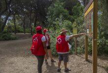 El programa de voluntariat mediambiental de Creu Roja a la Devesa tanca l'estiu amb la participació d'un centenar de persones compromeses per la conservació del parc natural