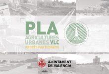 L'Ajuntament impulsarà un pla d'agricultures urbanes per recuperar i preservar els vincles amb l'Horta i potenciar el model agroecològic