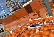 La Unió de Llauradors detecta cítrics importats amb pesticides prohibits a la UE en els lineals de supermercats
