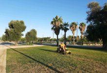 Se pone en marcha una intervención especial en los jardines de Sociopolis