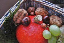 L'Ajuntament de València i la Creu Roja repartiran Cistelles D'Alimentació Saludable fins a desembre