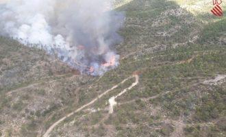 Mitjans terrestres continuen treballant en l'extinció de l'incendi d'Aiora, estabilitzat des d'ahir