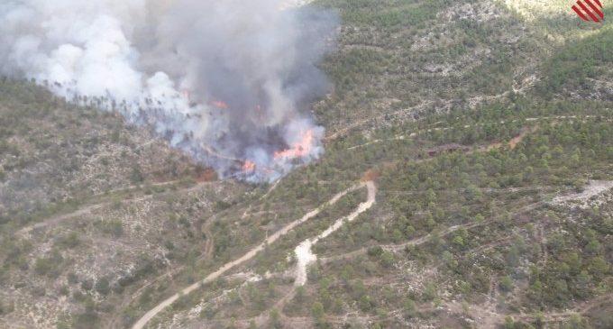 Mitjans terrestres i aeris treballen en l'extinció d'un incendi forestal a Aiora