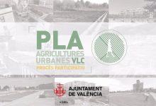 L'Ajuntament impulsarà un pla d'agricultures urbanes per a recuperar i potenciar el model agroecològic