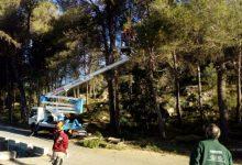Els alumnes dels tallers d'ocupació de Simat netegen la zona de Les Foies