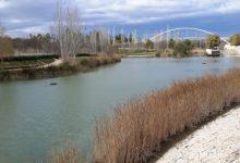 València acollirà una campanya d'educació ambiental al Parc de Capçalera