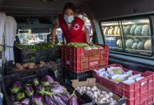 Producte fresc i de quilòmetre zero en els lots d'alimentació que reparteix l'Ajuntament de València entre persones vulnerables
