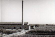 El Museu de la Rajoleria de Paiporta compleix 20 anys i ho celebra amb una gala i exposició commemorativa