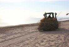"""La Secció de Platges de la Diputació adapta dos """"canyers"""" per arreplegar les canyes de les tempestes"""