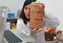 """El Museu de Prehistòria convoca una """"excursió virtual"""" amb motiu de la Setmana de la Ciència"""