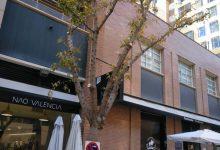 El Ayuntamiento de València acomete la poda de 176 árboles en la calle del escultor antonio sacramento