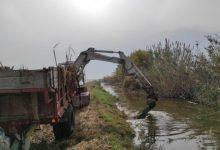 València arreplega 439 tones de palla d'arròs
