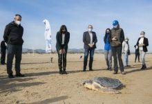 """L'Oceanogràfic porta la campanya """"La mar de tots"""" a Gandia"""