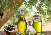LA UNIÓ coincideix a la CNMC en la falta de rigor de la nova norma de comercialització de l'oli d'oliva