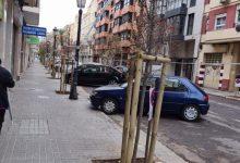 L'Ajuntament substitueix l'arbratge del carrer Pobla de Farnals per a evitar molèsties al veïnat