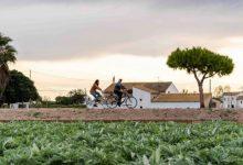 Generalitat i Ajuntament de València col·laboren per a millorar les connexions ciclistes metropolitanes
