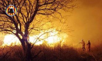 Extingit un incendi de vegetació en una zona de marjal a Massalfassar