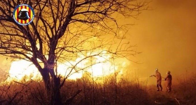 Extinguido un incendio de vegetación en una zona de marjal en Massalfassar