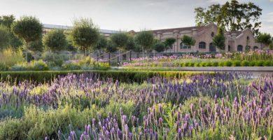 El Parque Central de València, finalista al premio Rosa Barba de la bienal de paisaje de Barcelona